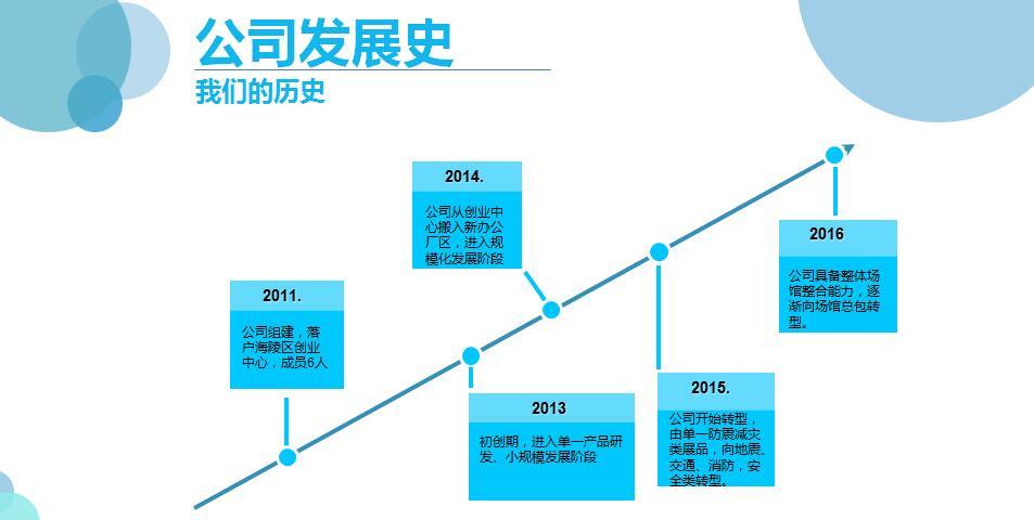 公司发展史